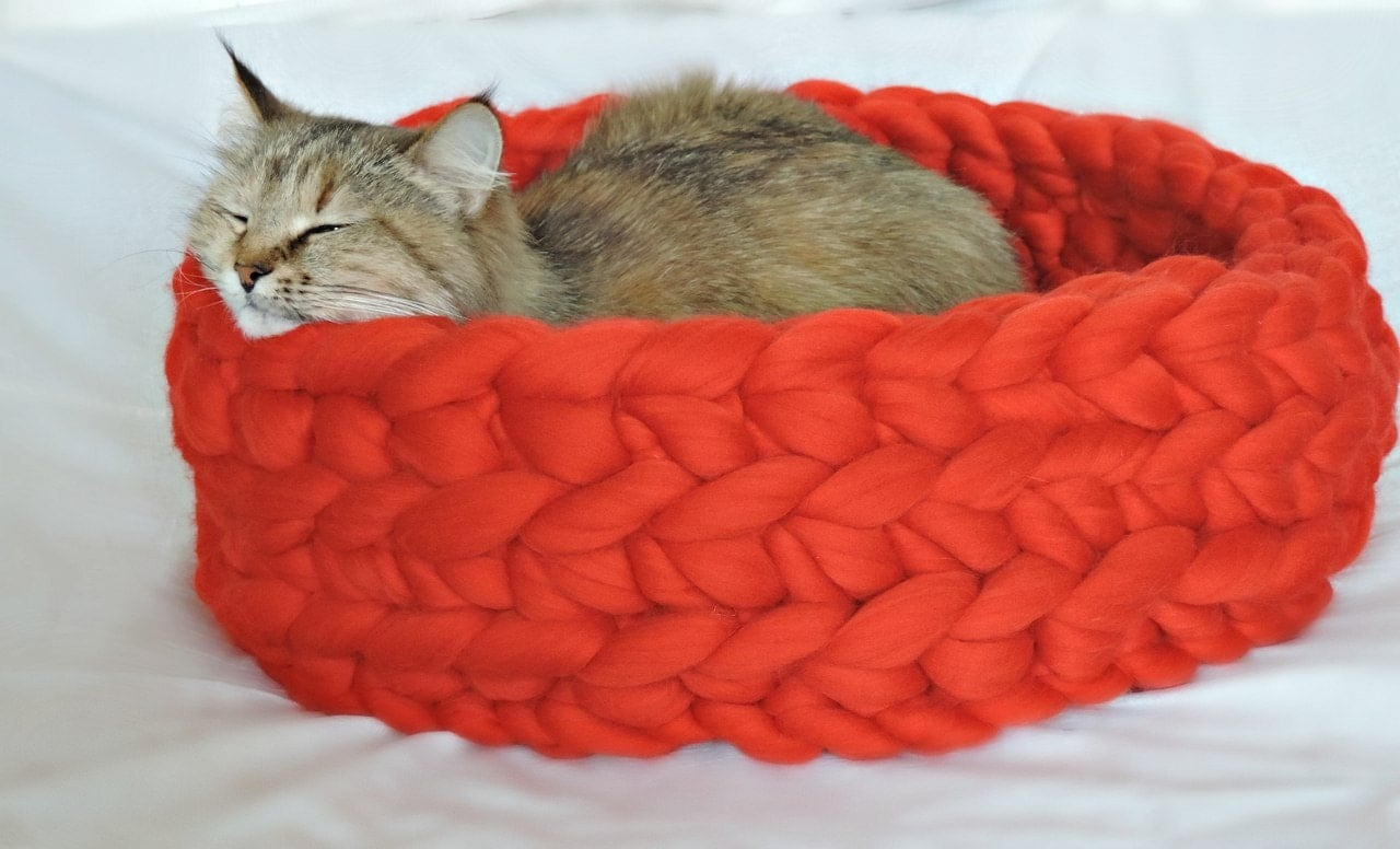 Buy Cat Bed Uk