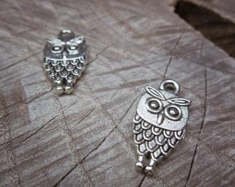 Owl Charm Pendant Charms ~2 pieces #100268