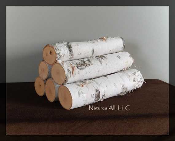 White Birch Fireplace Logs/6 Piece Set/3-4 inch Diameters/16 Inch /Rustic Wedding & Home Décor/Shipping Included: Item# BL-4100