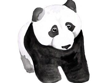 Panda Watercolour Print