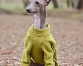 Raglan Sleeve Jumper for Italian Greyhounds