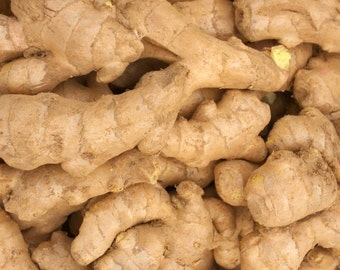 1/2 lb Ginger root Zingiber Officinale Fresh Herb Rhizome