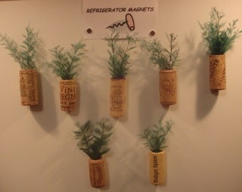 Hand crafted wine cork refrigerator magnet with air fern.