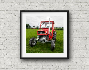 Classic Massey Ferguson, Old Antique Red Tractor.  Vintage farm vehicles & machinery - Square Photograph  - AllyEphotography