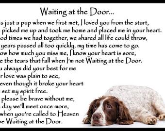 Liver and white Springer Spaniel Pet Dog Bereavement Memorial magnetic sympathy card Gift