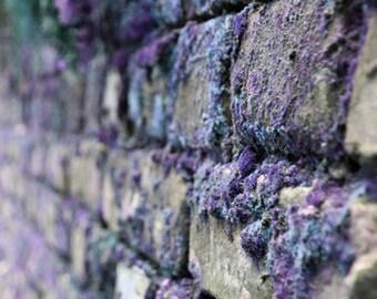 Art photography Wall decor Home decor prints Photo prints Poster Printable wall art Wall art prints Modern art print Living room art