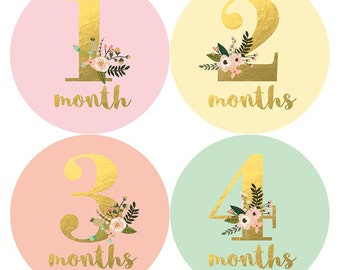 Baby Girl Monthly Sticker, Baby Sticker, Monthly Baby Sticker Girl, Gold Floral, Milestone Sticker, Baby Gift, Baby Girl, Petite Folio