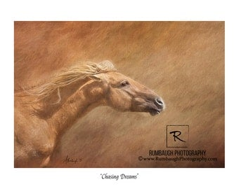 Wild horse poster-'Chasing Dreams'-18x24 poster