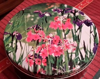 Vintage tin with spring crocus cover
