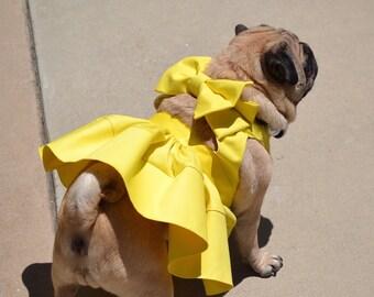FEATURED Dress
