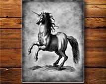 Stallion Print, Horse Decor, Unicorn Poster, Pony illustration  BW355