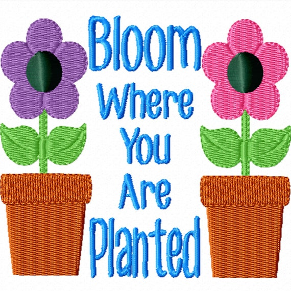 Bloom Where You Are Planted An Inspirational Machine