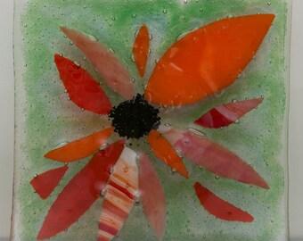 Fused glass dish - rudbeckia