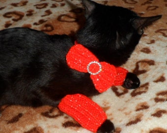 CAT BOW Collar and Leg Warmers.