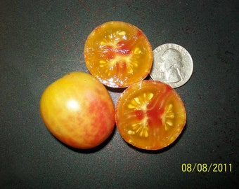 Cherry Tomato- ISIS CANDY-  bicolor cherry- heirloom- Indeterminate- 25 seeds