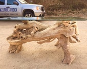 Ohio River driftwood over...