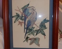 1959 Vintage Beautifully Matted & Framed Watercolor Blue Male Female Parakeet Bird Print Signed by Artist E Serton Perfect Cottage Decor