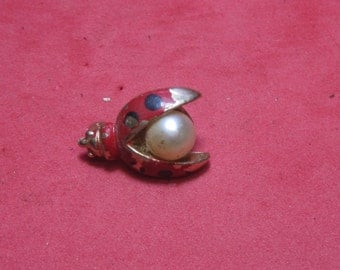 Antique Vintage Costume Brooch Beetle Bug