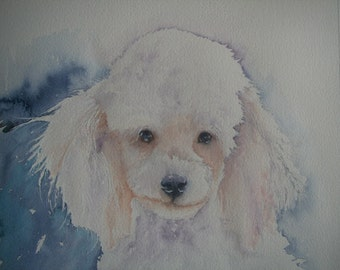 White Poodle watercolour painting