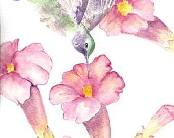 "Watercolor print ""Ruby-Throated Hummingbird"""