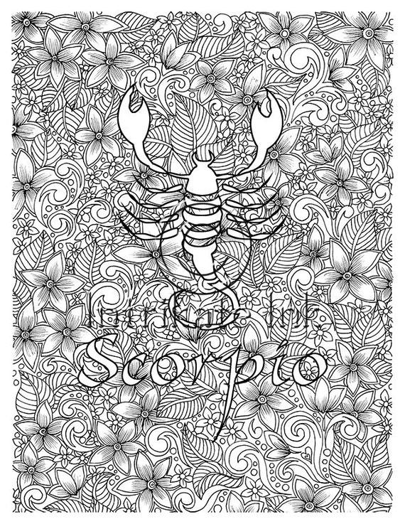 Scorpio Coloring Page Zodiac Sign