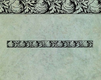 Clam Shell & Seaweed Border - Antique Style Clear Stamp