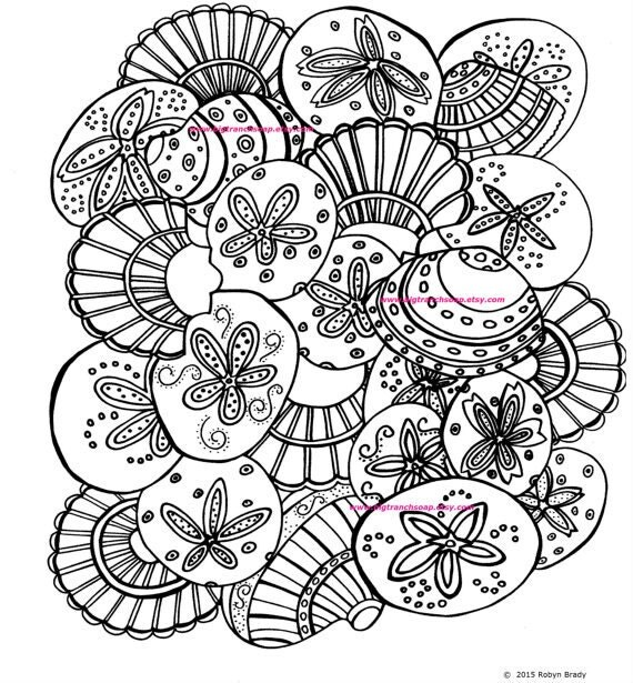seashell coloring pages - shells coloring page adult colouring hand drawn image