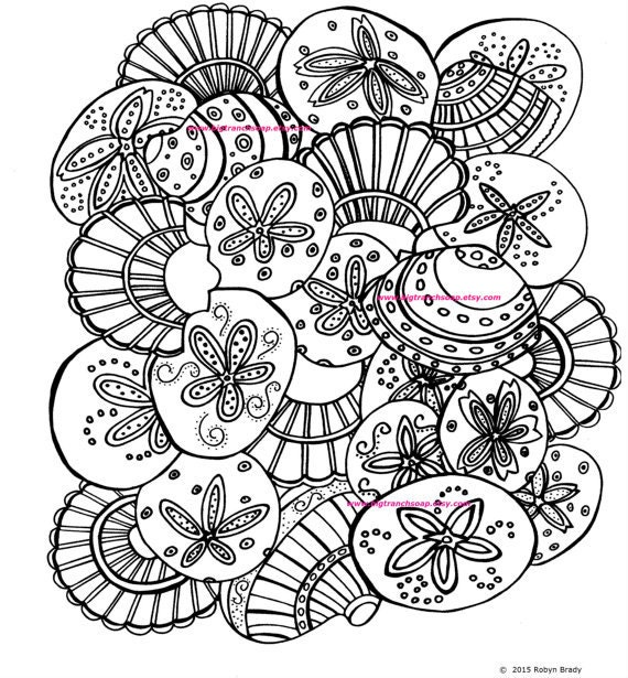 coloring pages of seashells | Shells Coloring Page Adult Colouring Hand Drawn Image