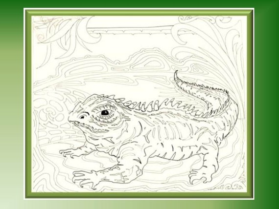 Tuatara Reptile Digital Design Coloring Page Large A3