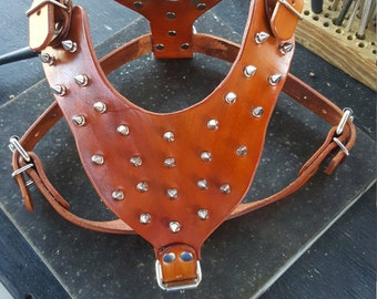 Leather Dog Harness, Leather Dog Harness with Spikes , Hand made and crafted, Tooled Harness with spikes, Personalized