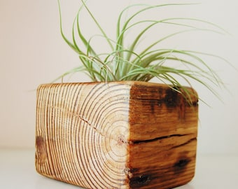 Reclaimed wood planter for air plant