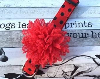 Laineys Red LadyBug Dog Collar