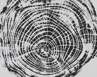 Ash Tree Ring Print