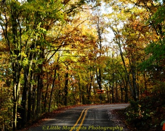 Art & Collectibles  Photography  Color  Fall  Colors  Digital Download  Photo  Photography  Arkansas  Roads Devil's Den