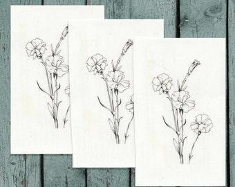 Temporary Tattoo Carnation Hand Drawn Illustration Design