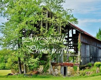 Rustic Barn V