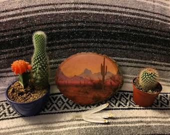 Desert Wood Photo