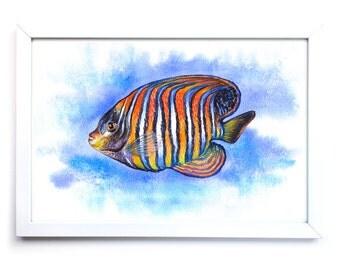Aquarium Angelfish. Watercolor Art Print 7,8x11,8