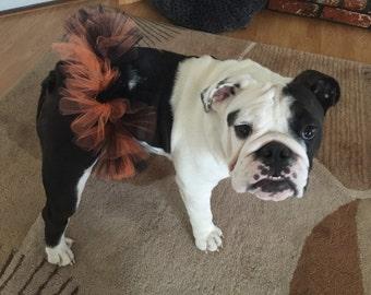ON SALE!!  Halloween Tutu For Pets/Tutu For Dogs/Orange And Black Tutu For Pets