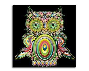 Colorful Owl HD Canvas
