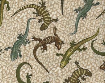 Lizards on Tan Kansas Studio