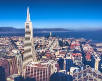 Transamerica Building San Francisco Skyline Photography Print