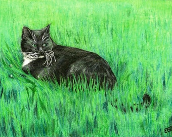 Custom Pet Portraits in Colored Pencil or Pastels
