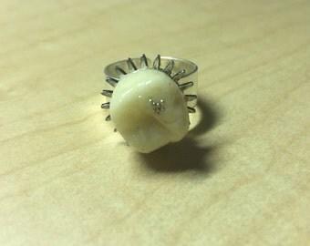 Glowing Dental Mechanics Ring