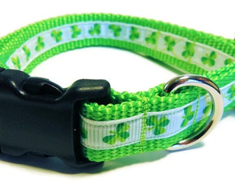Medium Shamrocks Dog Collar