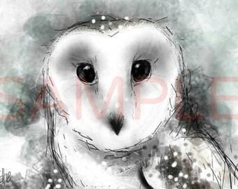 Snowy owl - A4 print