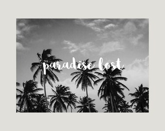 """Limited premium poster in A3 """"paradise lost"""" Palm trees art print"""