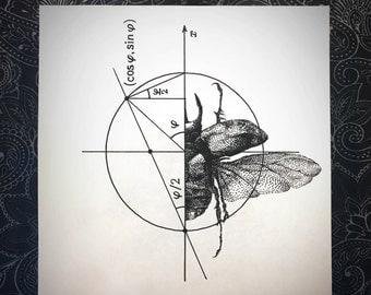 Coleopteran (Beetle)