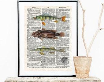 Vintage Fish -Neo retro, Dictionary paper, animals, elegant-