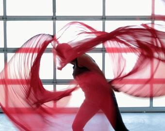 Double Layer Silk Flag // worship Praise dance flags